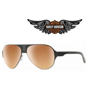 Harley Davidson® Óculos de Sol HD2015 02G