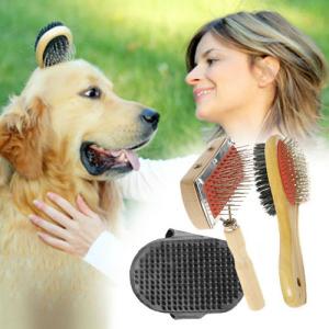 Conjunto 3 Peças Dog Brush Set | Deixe o seu Animal de Estimação com o Pêlo Saudável e Brilhante