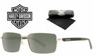 Harley Davidson® Óculos de Sol HDX 869 GLD-2