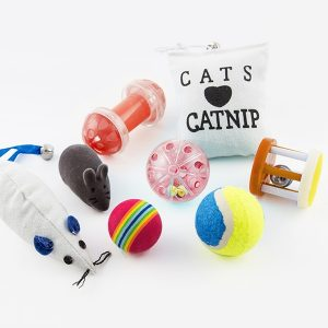 8 Brinquedos Para Gatos | A Pensar Na Melhor Ocupação do Seu Animal