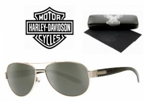 Harley Davidson® Óculos de Sol HDX 856 GLD-2