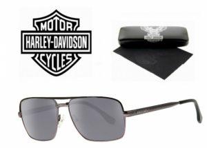 Harley Davidson® Óculos de Sol HD 866 GUN-3