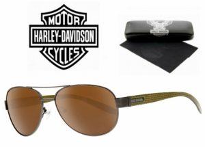 Harley Davidson® Óculos de Sol HD 856 GUN-1