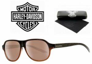 Harley Davidson® Óculos de Sol HDX 857 BRN-1