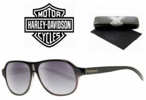 Harley Davidson® Óculos de Sol HDX 857 GRY-35