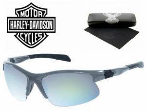 Harley Davidson® Óculos de Sol HDS 618 GRY‐3F69