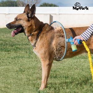 Anillo de lavado Mi perro de animal doméstico de My Pet Wash A'Hoop