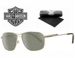 Harley Davidson® Óculos de Sol HDX 876 GLD-2