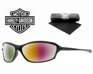 Harley Davidson® Óculos de Sol HDS 614 BLK-83F