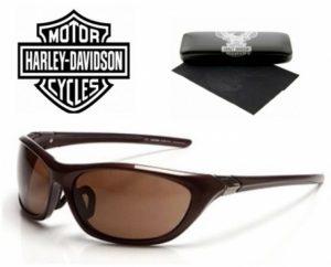 Harley Davidson® Óculos de Sol HDS 611 BRN-1
