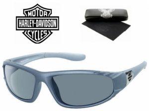 Harley Davidson® Óculos de Sol HDS 611 GRY-3F