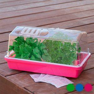 Mini-Estufa Para Sementeira | Disponível em 3 Cores