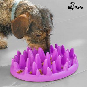 alimentador interactivo para mascotas Slow Food tazón My Pet Ez