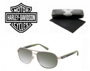 Óculos de Sol Harley Davidson® HDX867GLD-2