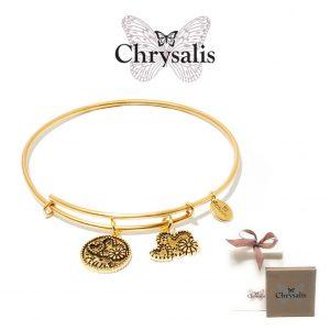 Pulseira Chrysalis® Aunt | Gold | Tamanho Adaptável | Com Caixa ou Saco Oferta
