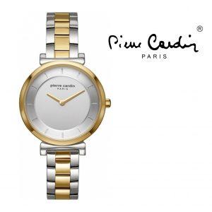 Relógio Pierre Cardin® PC902342F04