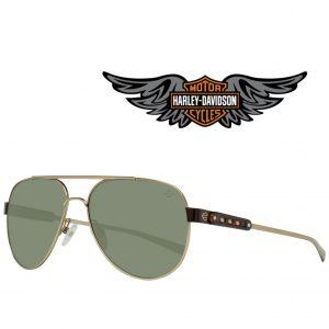 Harley Davidson® Óculos de Sol HD2046 32Q 56