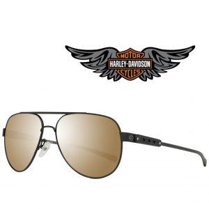 Harley Davidson® Óculos de Sol HD2046 01G 56