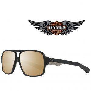 Harley Davidson® Óculos de Sol HD2009 02G 60