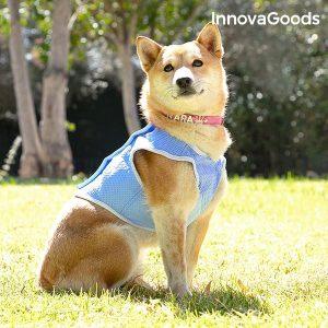 chaleco refrescante para mascotas pequeñas InnovaGoods Home Pet