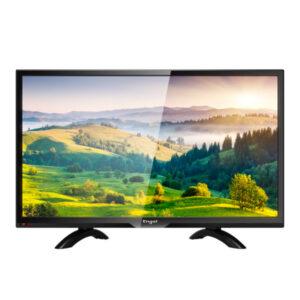 Televisão Engel 2055LE LE2055 20