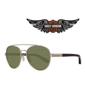 Harley Davidson® Óculos de Sol HD2038 32Q 54
