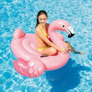 Figura Insuflável para Piscina Intex Flamingo (142 X 137 x 97 cm)