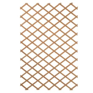 Nature Treliça de jardim 100x200 cm madeira natural 6041703 - PORTES GRÁTIS