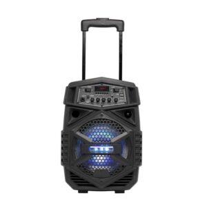 Altifalante Bluetooth portátil com microfone Denver Electronics TSP-110 10W Negro