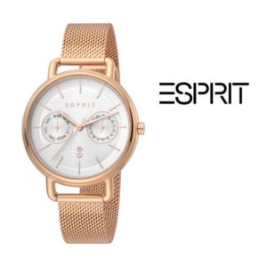 Relógio Esprit® ES1L179M0095