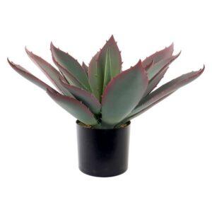 Planta Decorativa Dekodonia Polipropileno EVA (45 x 45 x 55 cm)