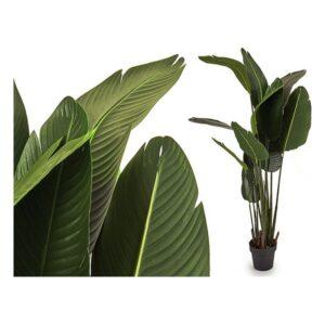 Planta Decorativa Ibergarden (40 x 176 x 40 cm)