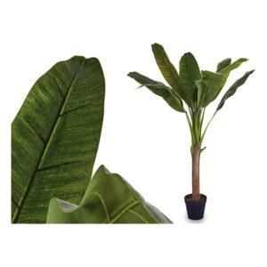 Planta Decorativa Ibergarden (40 x 125 x 40 cm)