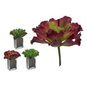 Planta Decorativa Ibergarden (23 x 22 x 22 cm)