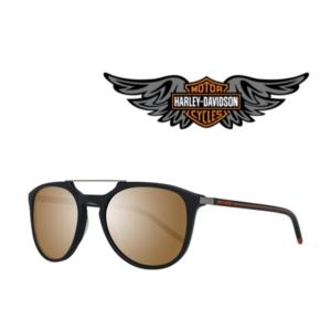 Harley Davidson® Óculos de Sol HD2017 02G