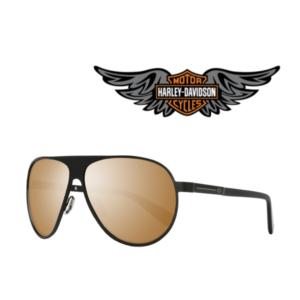 Harley Davidson® Óculos de Sol HD2003 02G