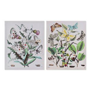 2 Pinturas DKD Home Decor Plantas botânicas Cottage 40 x 1.8 x 50 cm