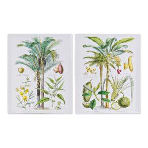 2 Pinturas DKD Home Decor Palmeiras Colonial 40 x 1.8 x 50 cm