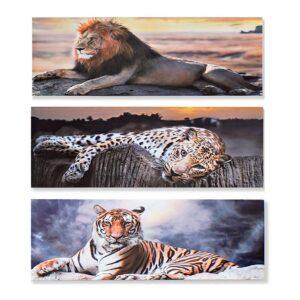 3 Pinturas DKD Home Decor animais Colonial 90 x 1.8 x 30 cm