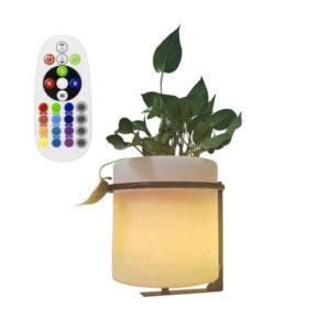 Vaso LED Ledkia 2,5 W (22 x 26 cm) (RGBW)