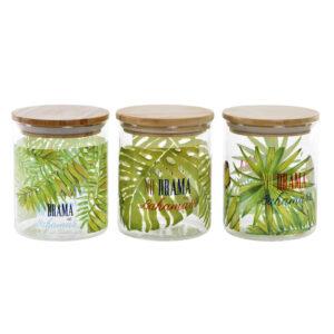 Bote DKD Home Decor Bambu Cristal Tropical (3 pcs) (10 x 10 x 12.5 cm)