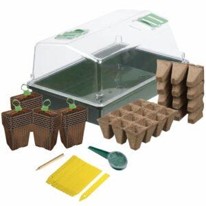 Nature Kit de propagação para iniciantes 200 pcs - PORTES GRÁTIS