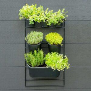 Nature Kit de parede para jardim vertical - PORTES GRÁTIS
