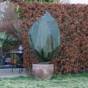 Protetor de Plantas Contra Geada Nature 70 g/m² 2,5x3 m verde - PORTES GRÁTIS