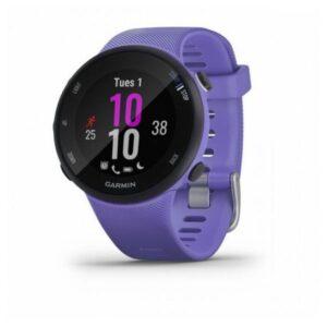 Smartwatch GARMIN Forerunner 45 1,04